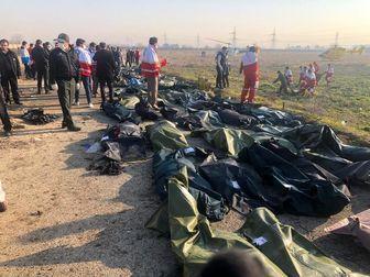دیدار ۴۱ خانواده قربانیان حادثه هواپیمای اوکراینی با رئیس جمهور