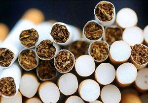 ضرر مصرف سیگار به اقتصاد جهان