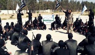 """تعداد کشته های گروه تروریستی """"احرار الشام"""" فاش شد"""