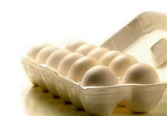مرغ و تخم مرغ در بازار چند؟