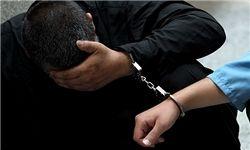عامل نشر اکاذیب در فضای مجازی دستگیر شد