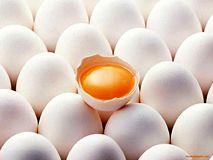 مخالفت مرغداران با آزادسازی قیمت تخممرغ