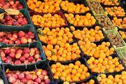 ۳۹ هزار تن میوه تنظیم بازار عید توزیع شد