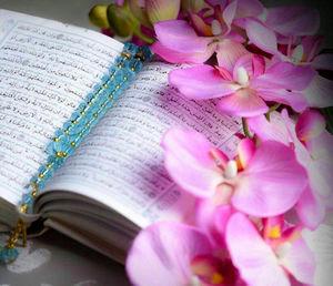 سایه دینداری در کلام امام علی علیه السلام