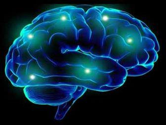 Treat your brain right