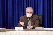 وزیر بهداشت: با تک تک شهدای سلامت مُردم و زنده شدم