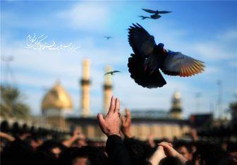 آیا می دانید کمترین پاداش برای زائر امام حسین(ع) چیست؟