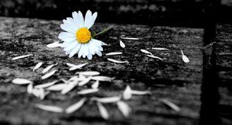 چه زمانی گرانی می شود و عمر انسانها کوتاه می گردد؟