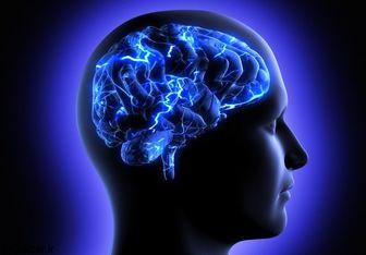 ۵ راهکار ساده و طلایی برای تقویت حافظه بلند مدت