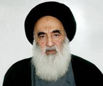 اعلام حمایت گسترده از مرجعیت عالی دینی در شهر نجف اشرف