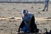 تروریست ها ۵ فرد مین زدا را  در افغانستان کشتند