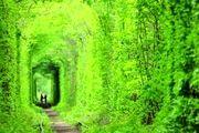 تونل عشق کجاست؟/ گزارش تصویری