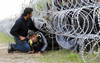 بازداشت شماری از حامیان مهاجران در کالیفرنیا/ عکس