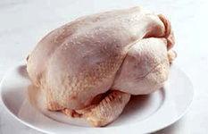 احتمال افزایش فصلی قیمت مرغ
