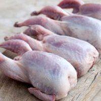 در مورد گوشت بلدرچین بیشتر بدانید