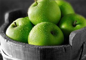 ورود سیب آمریکایی به کشور جای شرمندگی دارد