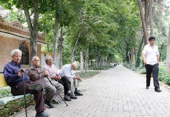 گزارش مرکز آمار ایران از افزایش خانوارهای تکنفره