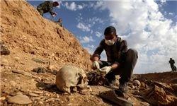 ۲۰۰ گور جمعی در عراق کشف شد