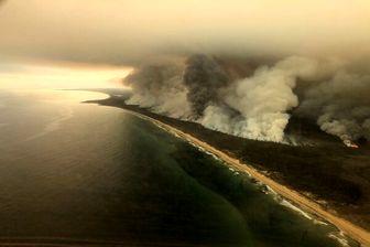 ادامه فاجعه انسانی و زیست محیطی در استرالیا/ آتش به نیوزیلند رسید
