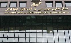 تحقیق و تفحص از «عملکرد سازمان بورس» کلید خورد