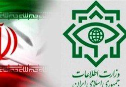 انهدام شبکه مفسدان ارز دولتی توسط وزارت اطلاعات