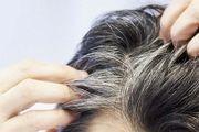 عواملی  که سبب سفید شدن زودرس مو می شود